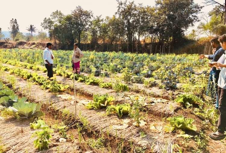 Support Farmers Livelihood